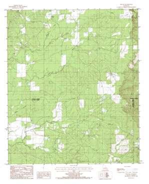 Holum topo map