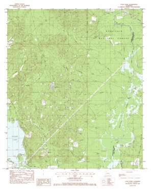 Coup Point USGS topographic map 31092h8