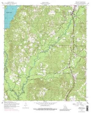 Newllano topo map