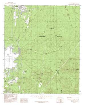 Pineland South USGS topographic map 31093b8