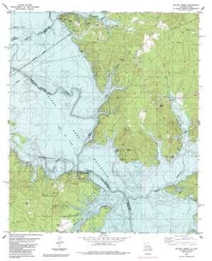 Salter Creek topo map