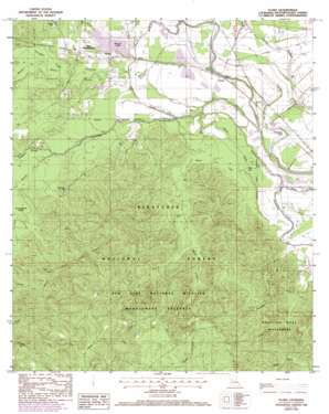 Natchitoches South topo map