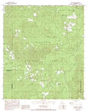 Bellwood topo map