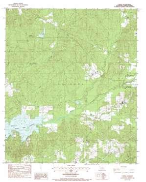 Loring topo map