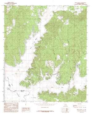 Beech Bayou topo map