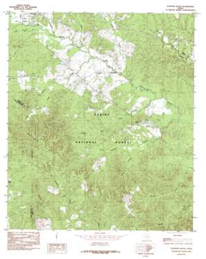 Patroon South topo map