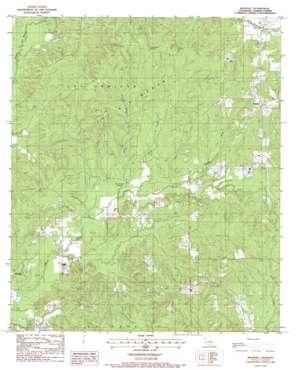 Belmont USGS topographic map 31093f5