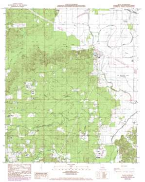 Allen topo map