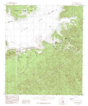 Mcgee Bend topo map
