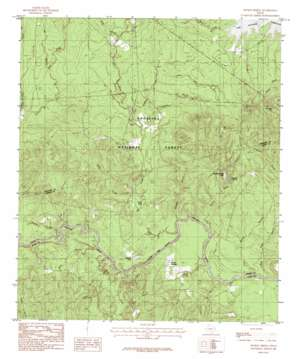 Boykin Spring topo map