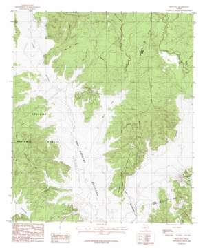 Buck Bay topo map