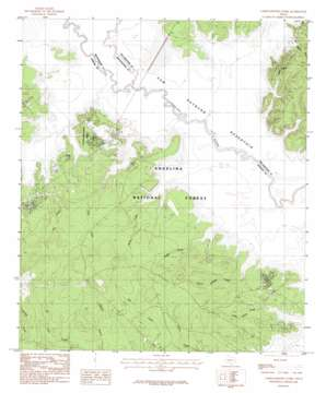 Cassells-Boykin Park topo map