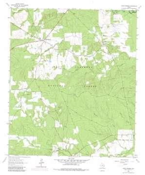 Apple Springs topo map