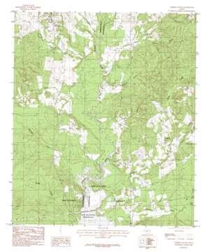Chireno South topo map