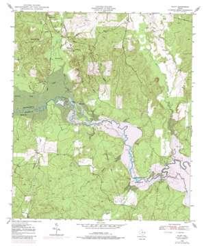 Platt topo map