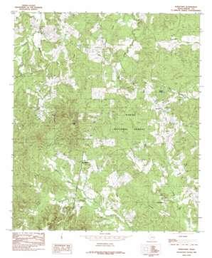 Hurstown topo map