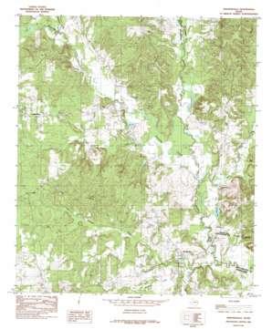 Martinsville topo map