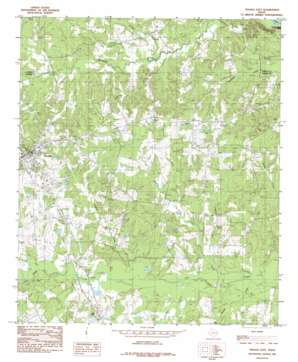 Tenaha East USGS topographic map 31094h2