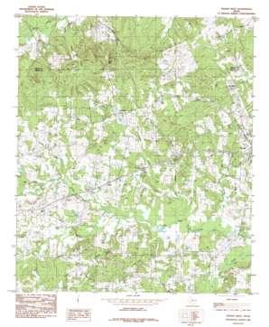 Tenaha West topo map