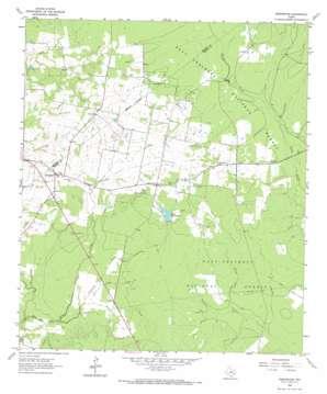 Pennington topo map