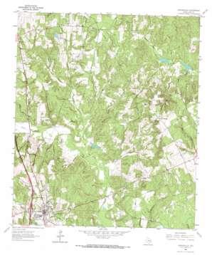 Centerville topo map