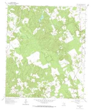 Lake Leon USGS topographic map 31095d7