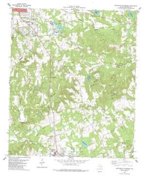 Southeast Palestine topo map