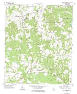 New Summerfield topo map