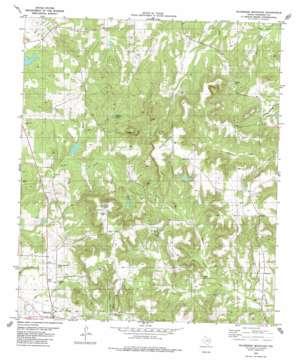 Wilkerson Mountain topo map