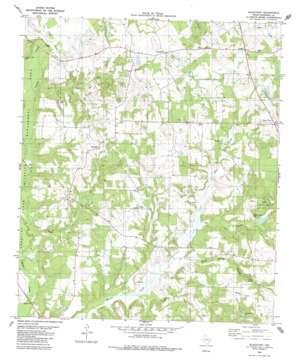 Blackfoot USGS topographic map 31095h7