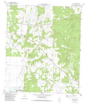 Cayuga USGS topographic map 31095h8