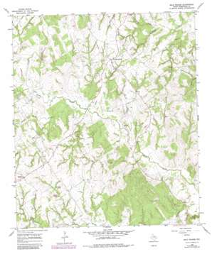 Bald Prairie topo map