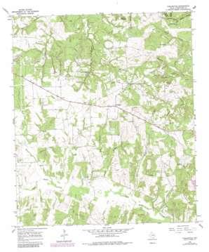 Turlington topo map