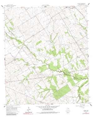 Echols topo map