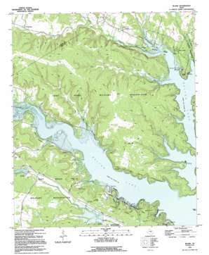 Bland topo map