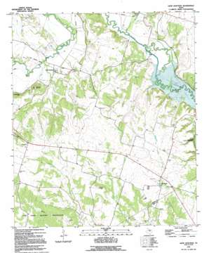 Leon Junction topo map