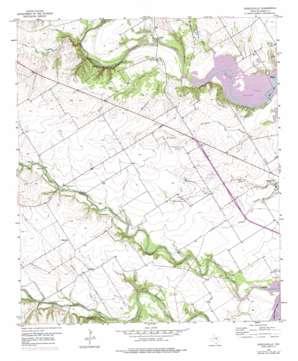 Speegleville topo map