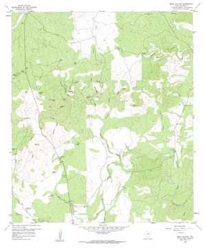 Bear Hollow topo map