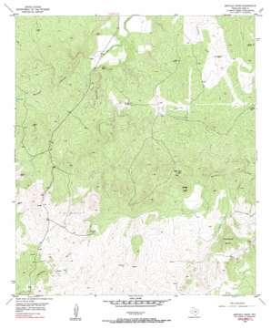 Buffalo Knob topo map