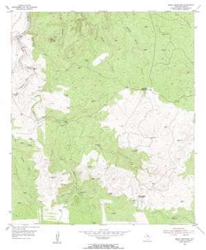 Brady Mountain topo map