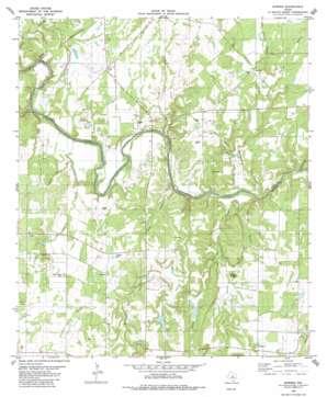 Bowser USGS topographic map 31098d8