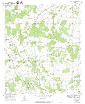 Pecan Wells USGS topographic map 31098e3