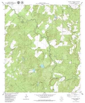 Blanket Springs topo map