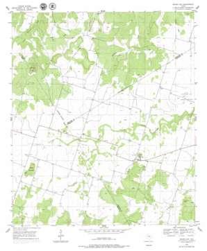 Indian Gap topo map