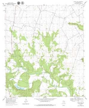 Eidson Lake topo map