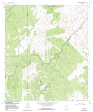 Pecan Springs USGS topographic map 31099a1