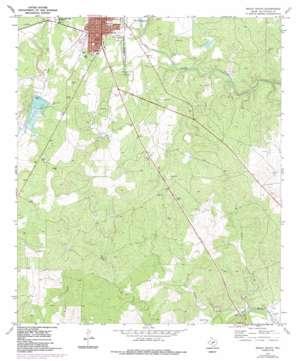 Brady South topo map
