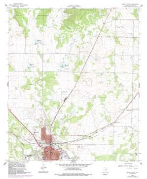 Brady North topo map