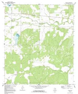 Pasche topo map
