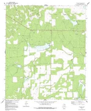 Live Oak topo map
